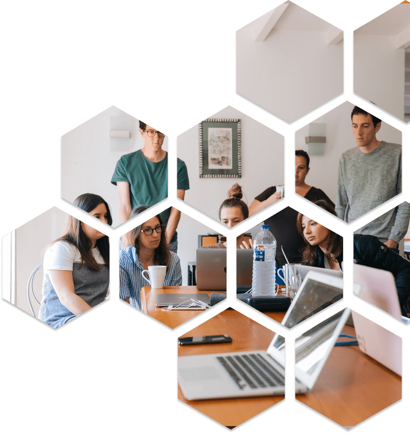 employees in workplace on laptops