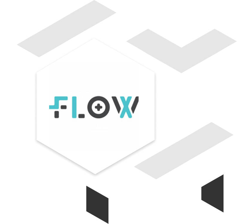 flow client brand logo with geometric shapes