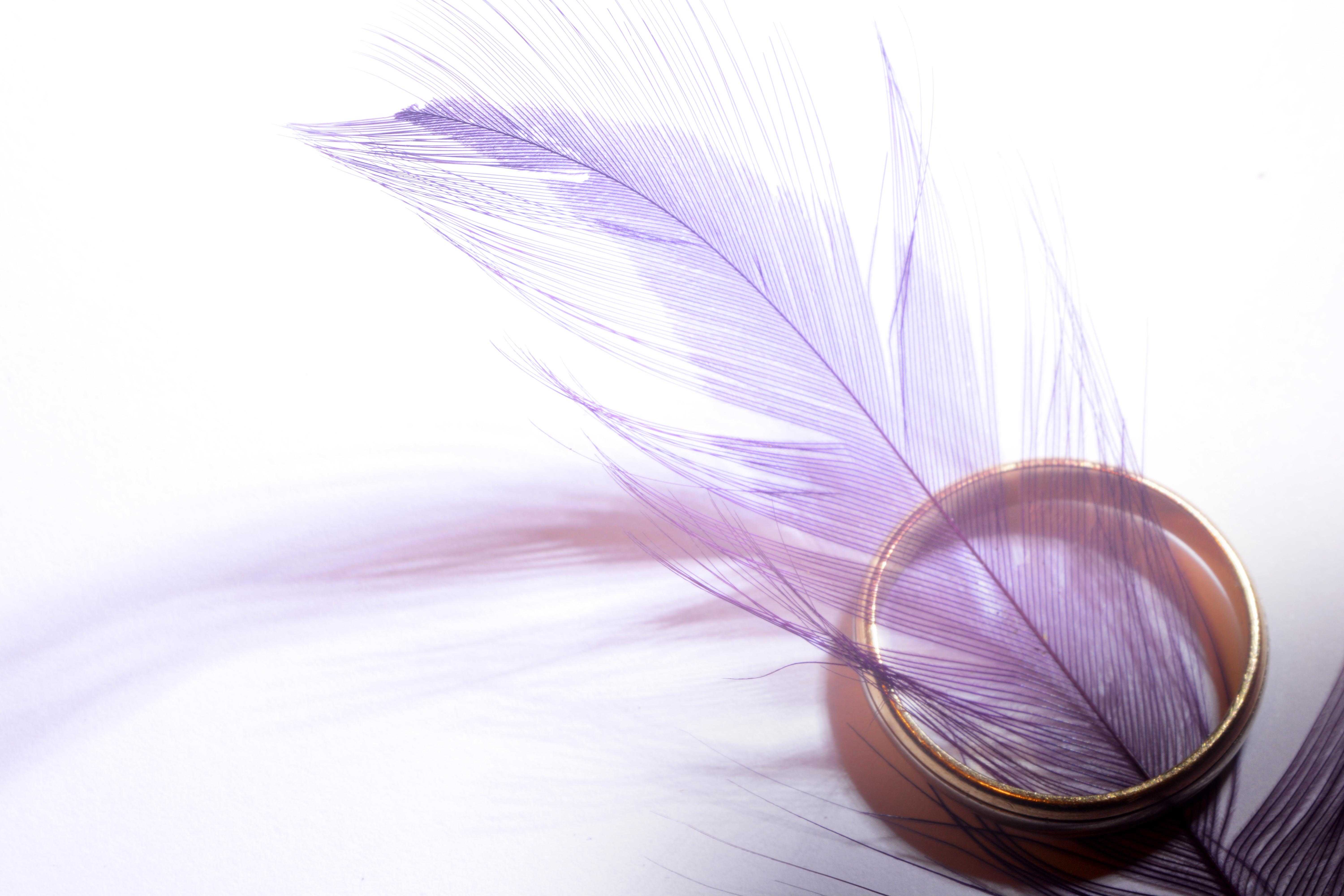 Gold ring and feather